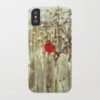 cardinal iPhone & iPod Cases featuring cardinal by Bonnie Jakobsen-Martin