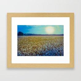 Rising Cotton Framed Art Print