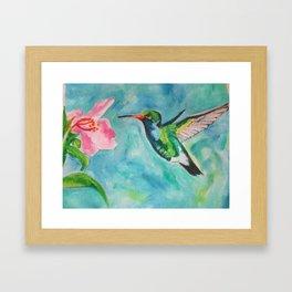 Beautiful Hummingbird And Flower Framed Art Print