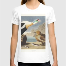 King Duck from Birds of America (1827) by John James Audubon etched by William Home Lizars T-shirt