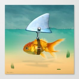 gold fish Canvas Print