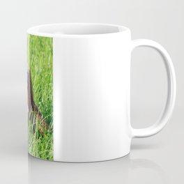 Domo Nation Coffee Mug