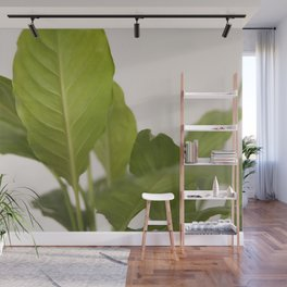 Hojas verdes (2) (green leafs) Wall Mural