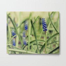 spring canvas Metal Print