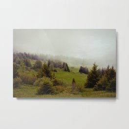 Misty Forest Metal Print
