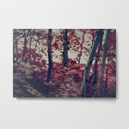 Bewitching Forest Metal Print