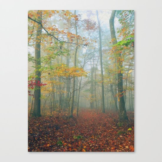 Find Your Path Canvas Print