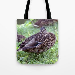 Mittagsruhe / at noon rest Tote Bag