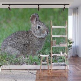 Bunny 3 Wall Mural