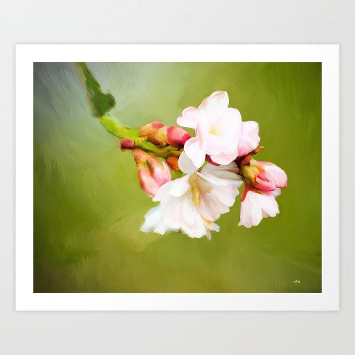 Cherry Blossom Painting Art Print
