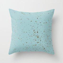 Robin Egg Blue Throw Pillow
