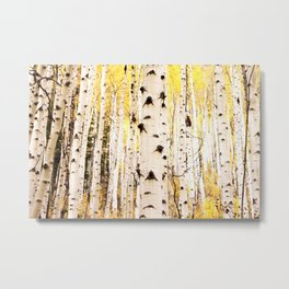 The Trees in Color Metal Print