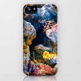 Enchanted Caves iPhone Case