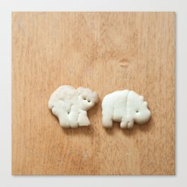 Animal Crackers - wood1 Canvas Print