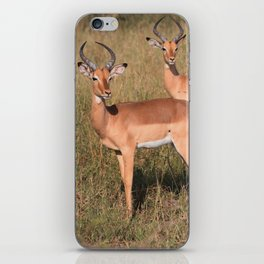 Boys Looking for Girls iPhone Skin
