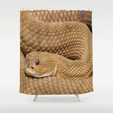 Brown Rattlesnake  Shower Curtain