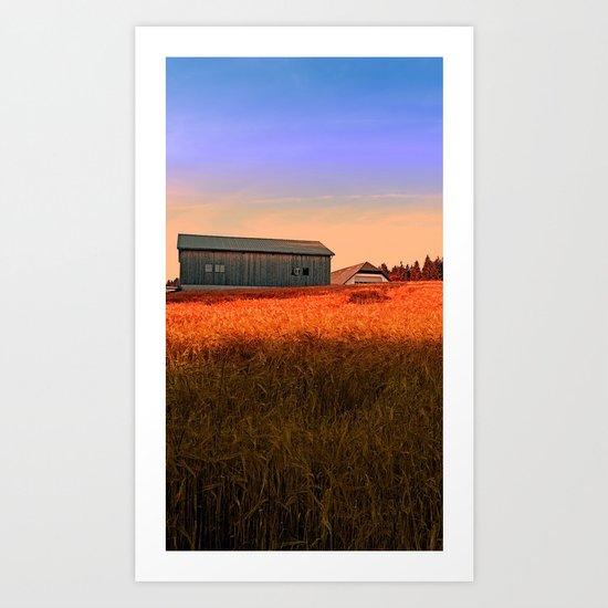 Burning fields of summer | landscape photography Art Print