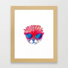 Trimmed Pomeranian in glasses Framed Art Print
