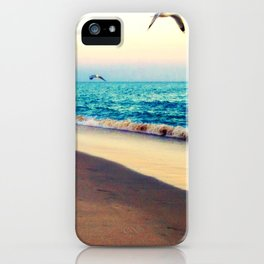 Lotsa More Gulls iPhone Case