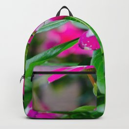 Top Off Backpack