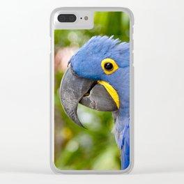 Blue Hyacinth Macaw - Anodorhynchus hyacinthinus Clear iPhone Case