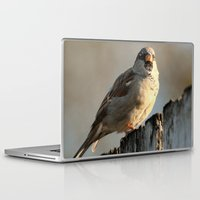 lonely Laptop & iPad Skins featuring Independent! by IowaShots