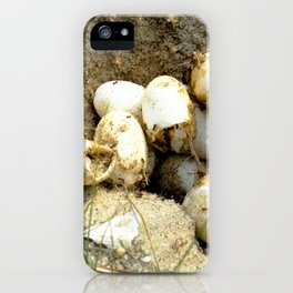 Watercolor Turtle, Turtle Eggs 02, Janes Island, Maryland iPhone Case