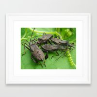 army Framed Art Prints featuring army by Dottie