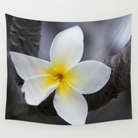 singapore Wall Tapestries featuring Plumeria obtusa Singapore White Blossom by Sharon Mau
