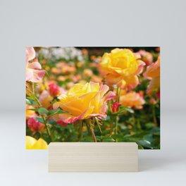 Warm Garden Mini Art Print