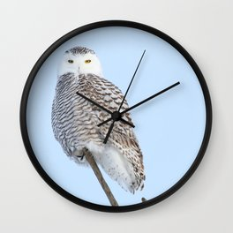 My kind of marshmallow Wall Clock