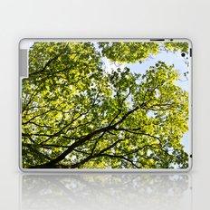 Peaceful Forest Laptop & iPad Skin