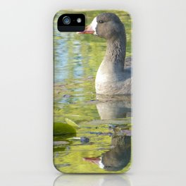 Perfect Day at the Pond iPhone Case