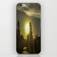 airplanes iPhone & iPod Skins featuring Airplanes & Sunshine  by Liese May Photography