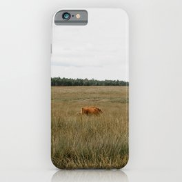 Highland Cows eating grass | Scottish Highlanders, cattle, cows in the Netherlands | Wild animals | Fine art travel and nature photography iPhone Case