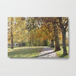 A Walk in the Park Metal Print