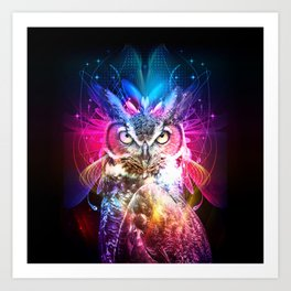 Owl Fighter Art Print