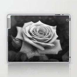 Pink Roses in Anzures 4 B&W Laptop & iPad Skin