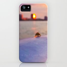 The Lady And The Lake iPhone Case