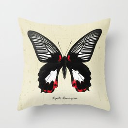 Butterfly05_Papilio Rumanzovia Throw Pillow