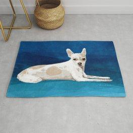 The Chihuahua Rug