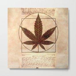 vitruvian marijuana Metal Print