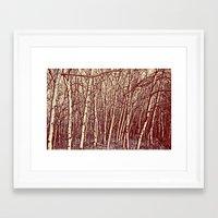 birch Framed Art Prints featuring Birch by Indigo Rayz
