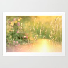 A Field Far Far Away Art Print