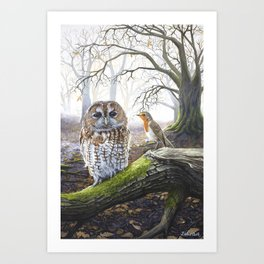 The Messenger - Acrylic Painting - Owl and Robin Art Print