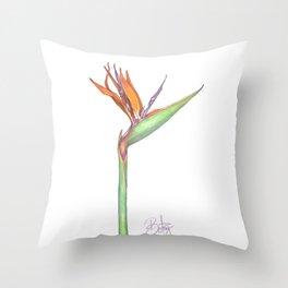 Birds of Paradise flower, Strelitzia Reginea. Throw Pillow