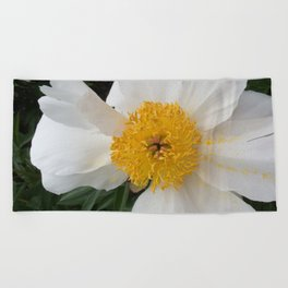 White Beauty by Teresa Thompson Beach Towel