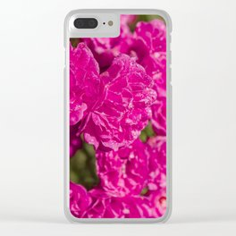 Bush of pink purple rose Clear iPhone Case