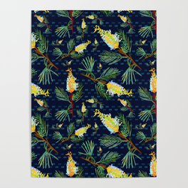 Grevillea - Australian Native Florals Poster