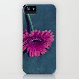 Gerbera for love iPhone Case